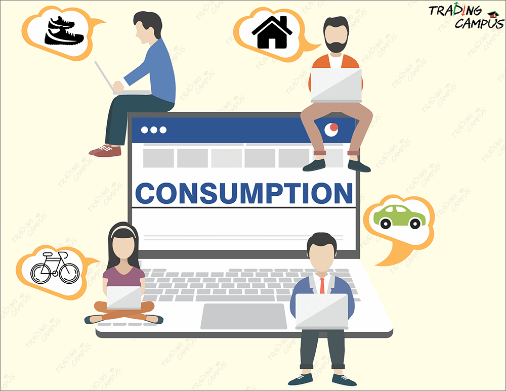 consumers and consumption